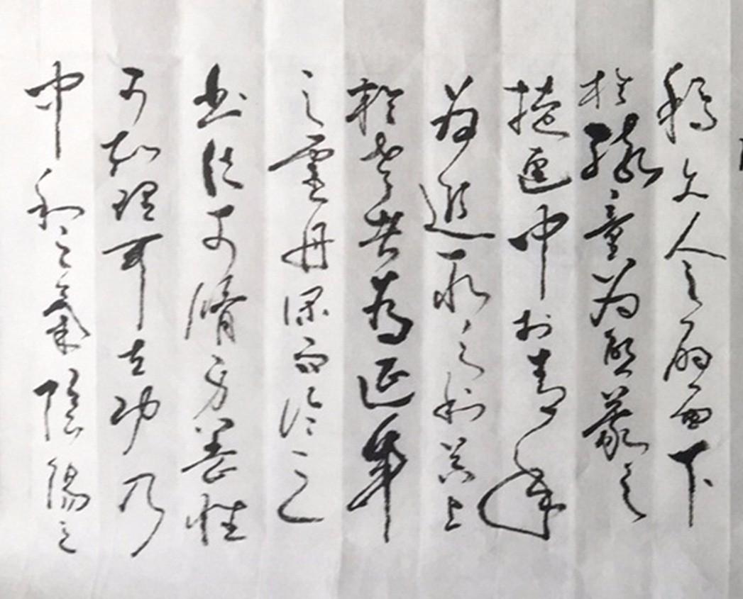 艺术家石维加草书书法_图1-1