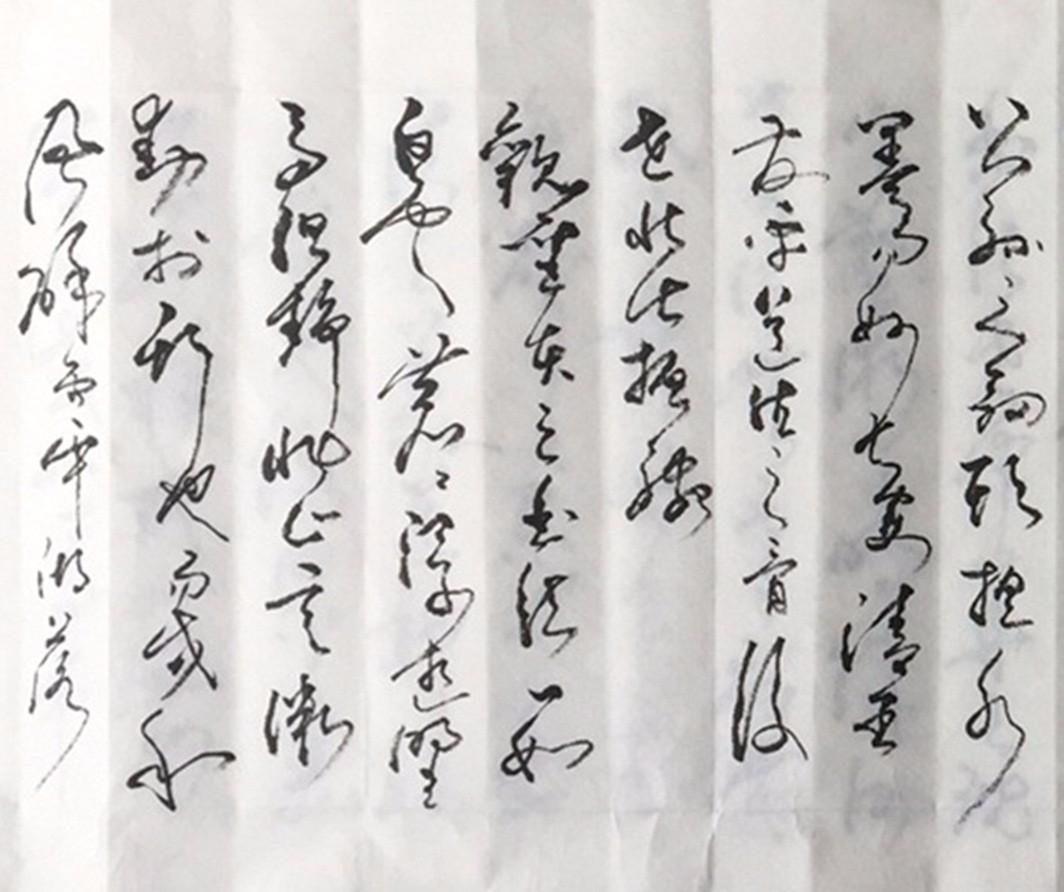 艺术家石维加草书书法_图1-2
