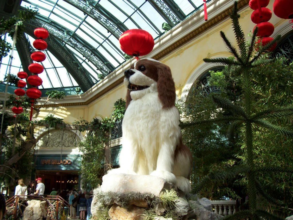 """狗年吉祥:美国人就喜欢过""""中国年""""_图1-4"""