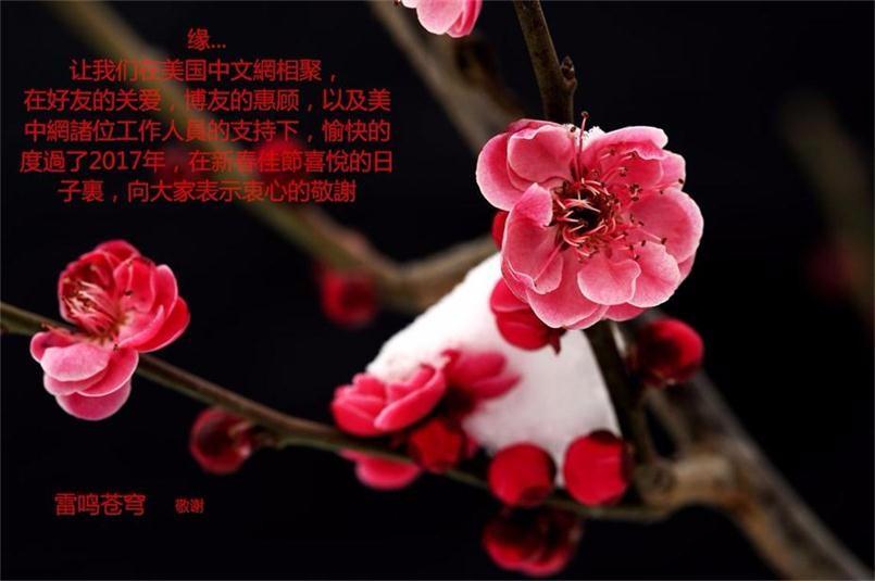 【新春佳節的祝福】_圖1-2