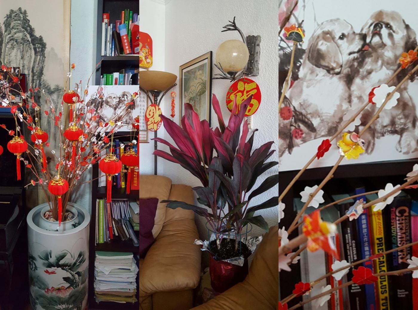 [田螺随拍]过年家居的装饰也是对父母亲的一种传承_图1-3
