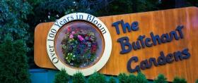 加拿大布查德花园,不停地绽放