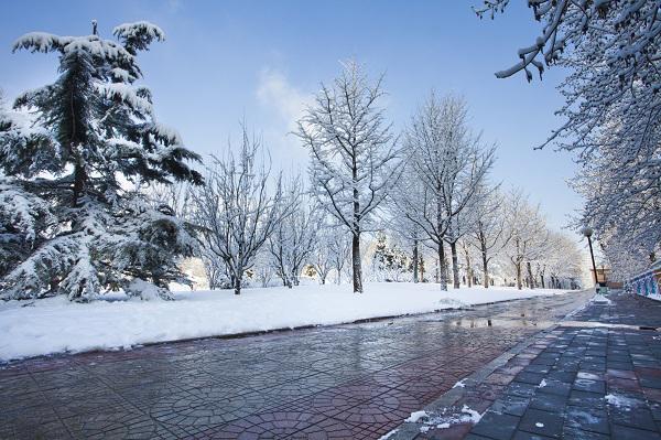 北京的冬天_图1-3