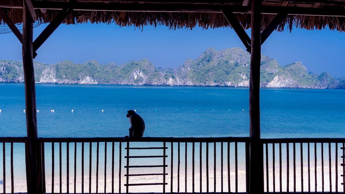 宁静祥和美丽迷人的越南吉婆岛_图1-10