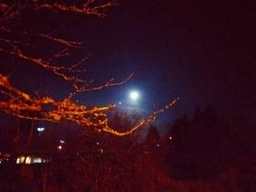 美国的月亮不比中国圆(图)