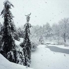 【中间偏左】好大的雪