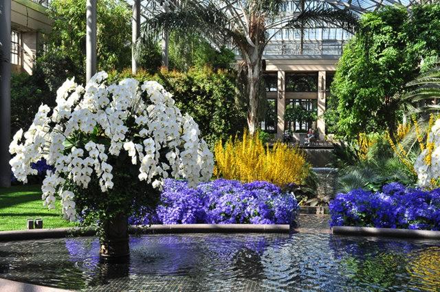 举世闻名的花园......春到长木公园_图1-33