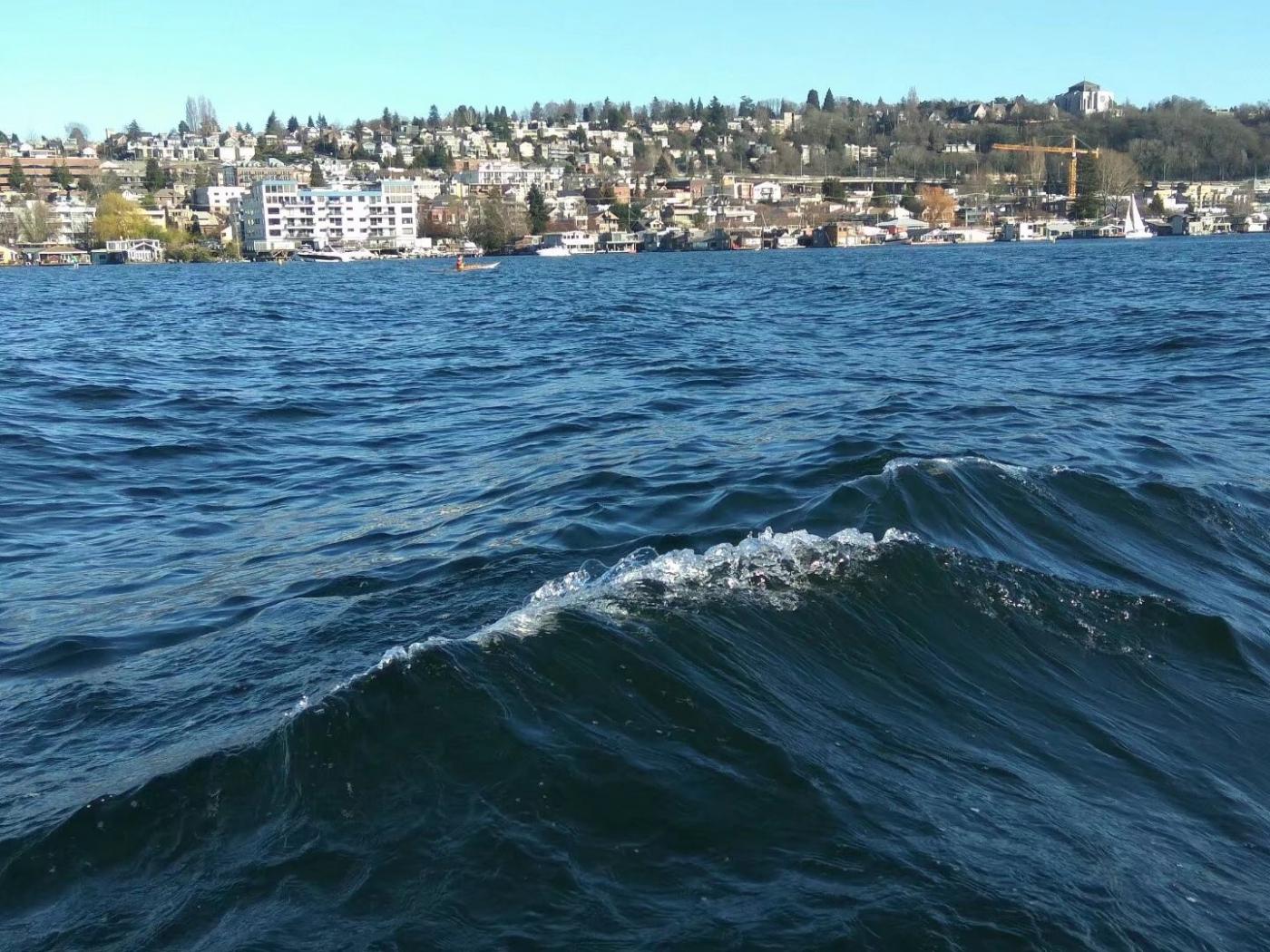 水陆两栖车游西雅图(图)_图1-15