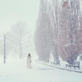 【风】三月里的一场大雪
