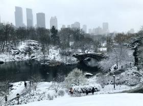 【田螺手机摄影】在纽约市拍雪