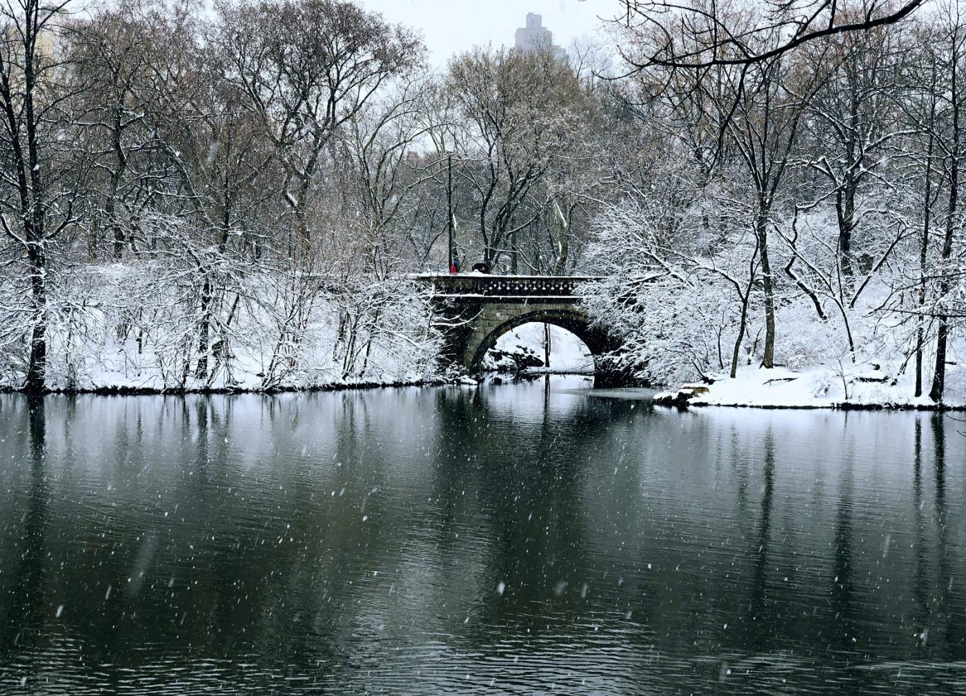 【田螺手机摄影】在纽约市拍雪景、还是中央公园最漂亮_图1-3