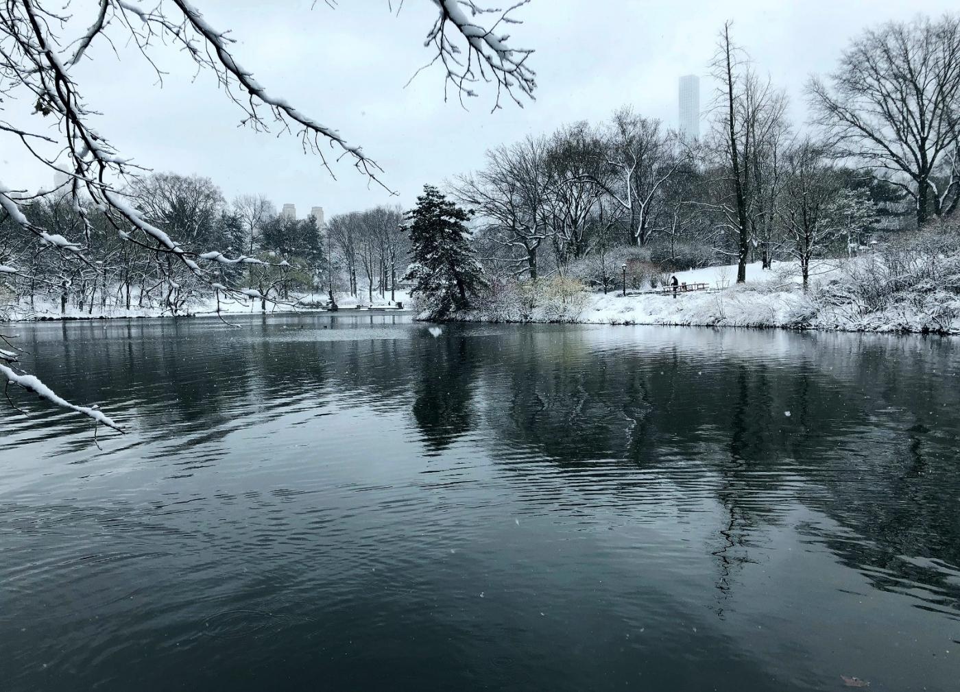 【田螺手机摄影】在纽约市拍雪景、还是中央公园最漂亮_图1-4