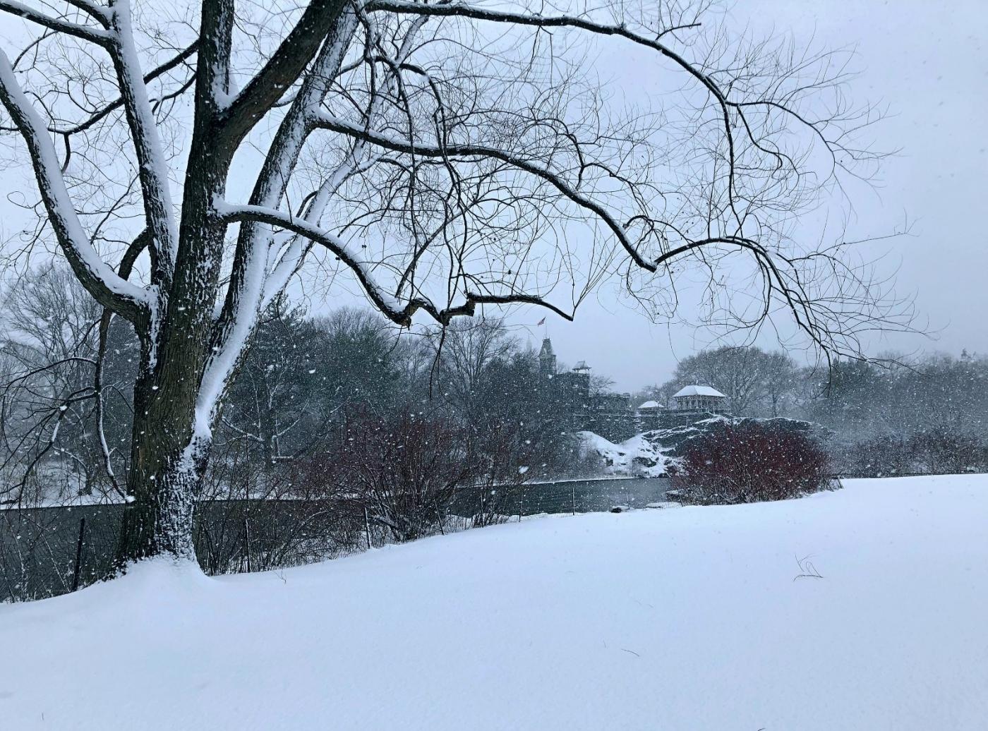 【田螺手机摄影】在纽约市拍雪景、还是中央公园最漂亮_图1-5