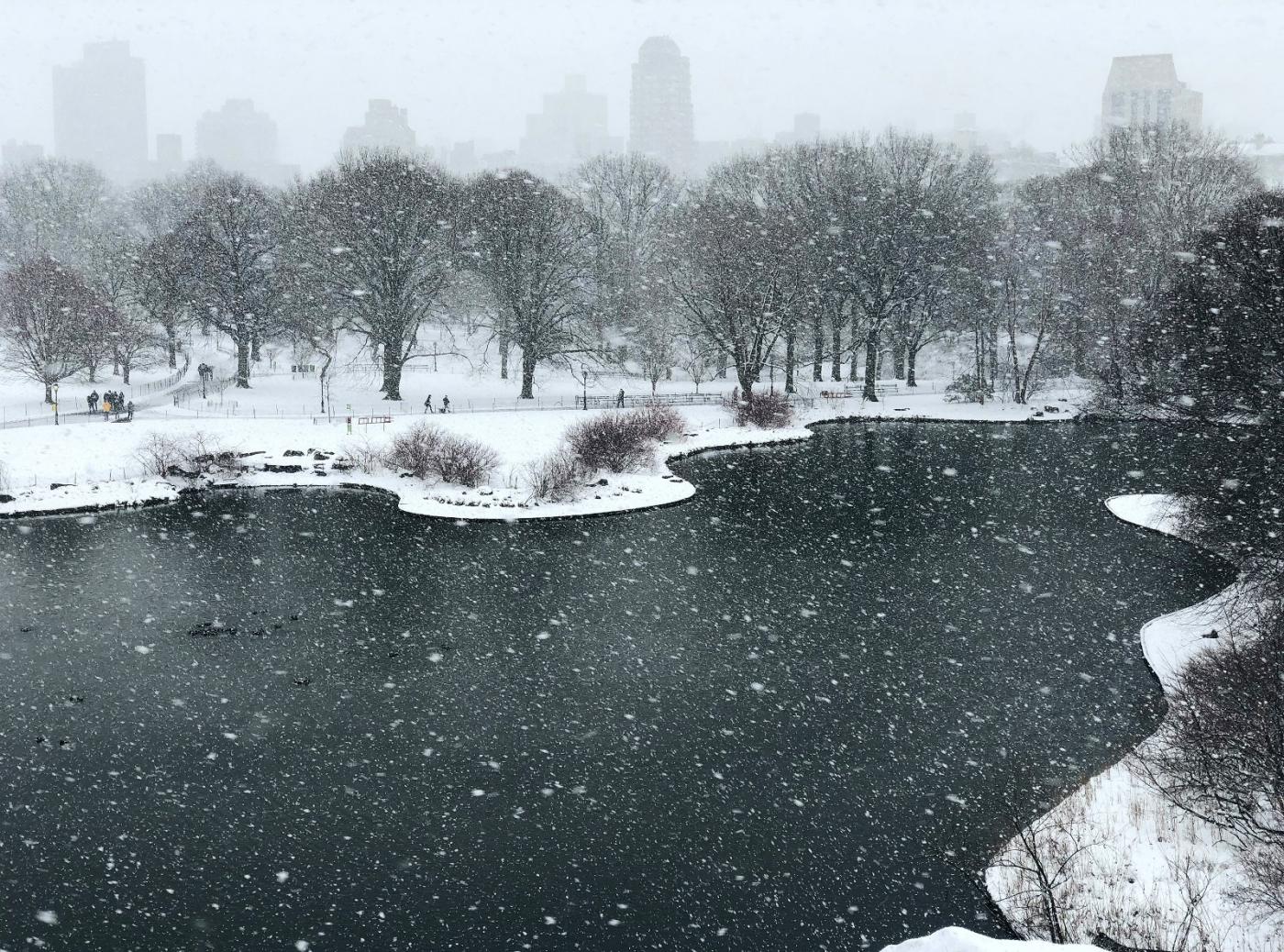 【田螺手机摄影】在纽约市拍雪景、还是中央公园最漂亮_图1-6