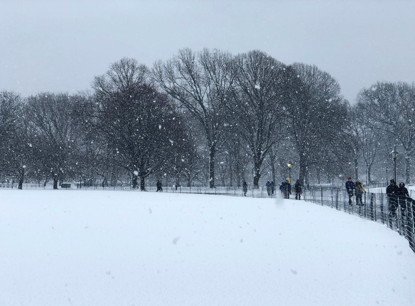 【田螺手机摄影】在纽约市拍雪景、还是中央公园最漂亮_图1-8