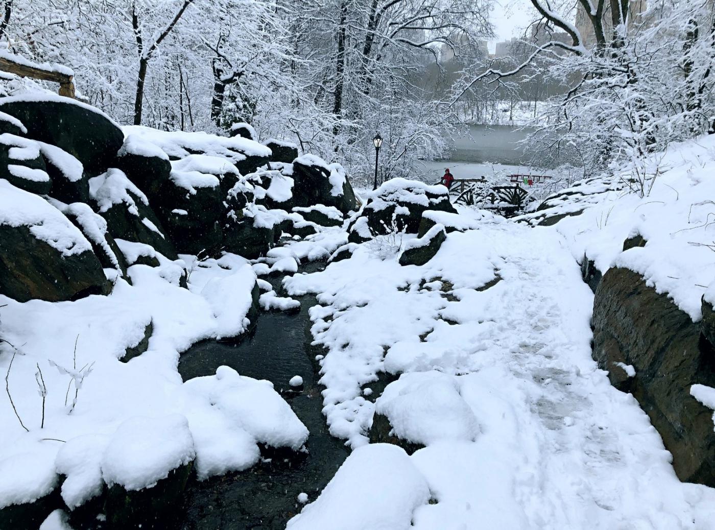 【田螺手机摄影】在纽约市拍雪景、还是中央公园最漂亮_图1-10