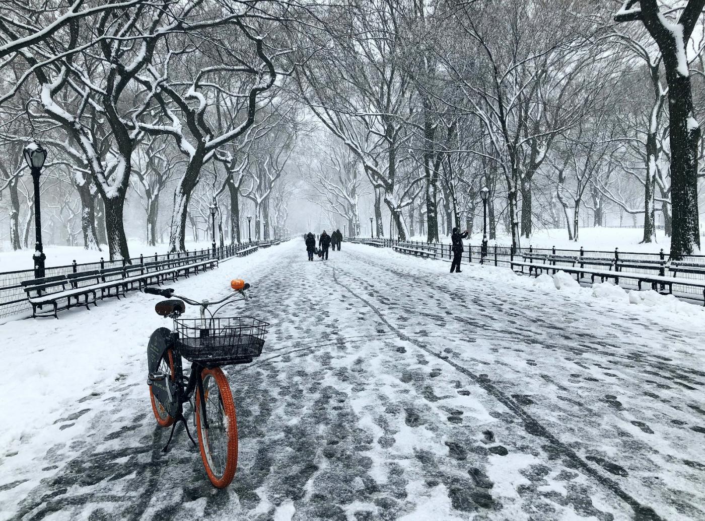 【田螺手机摄影】在纽约市拍雪景、还是中央公园最漂亮_图1-11