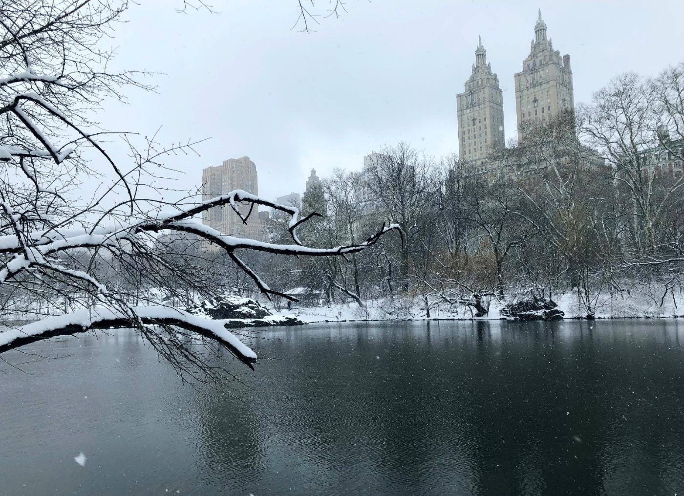 【田螺手机摄影】在纽约市拍雪景、还是中央公园最漂亮_图1-13