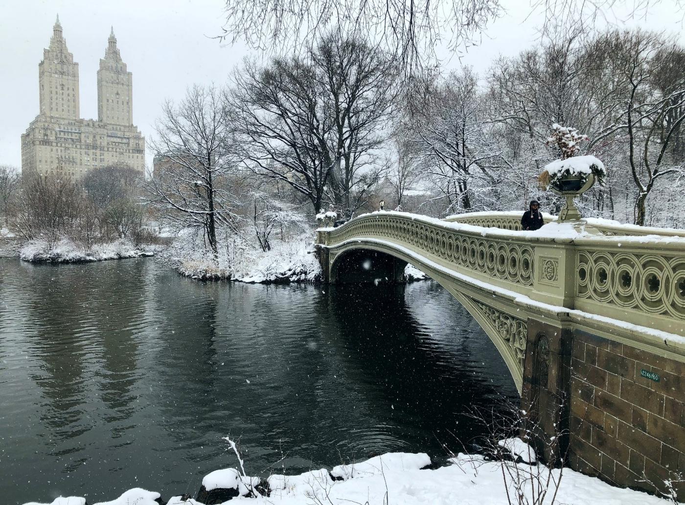 【田螺手机摄影】在纽约市拍雪景、还是中央公园最漂亮_图1-14