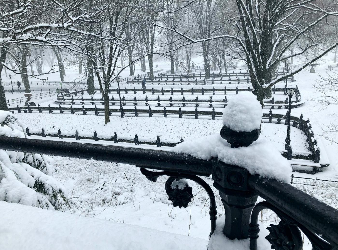 【田螺手机摄影】在纽约市拍雪景、还是中央公园最漂亮_图1-21