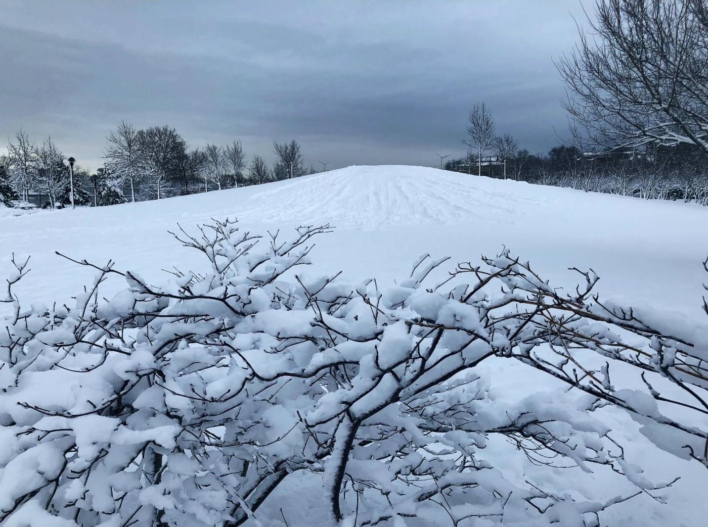 【田螺手机摄影】在纽约市拍雪景、还是中央公园最漂亮_图1-33