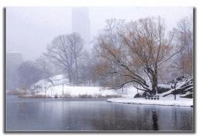 春分时节好大雪 中央公园景色