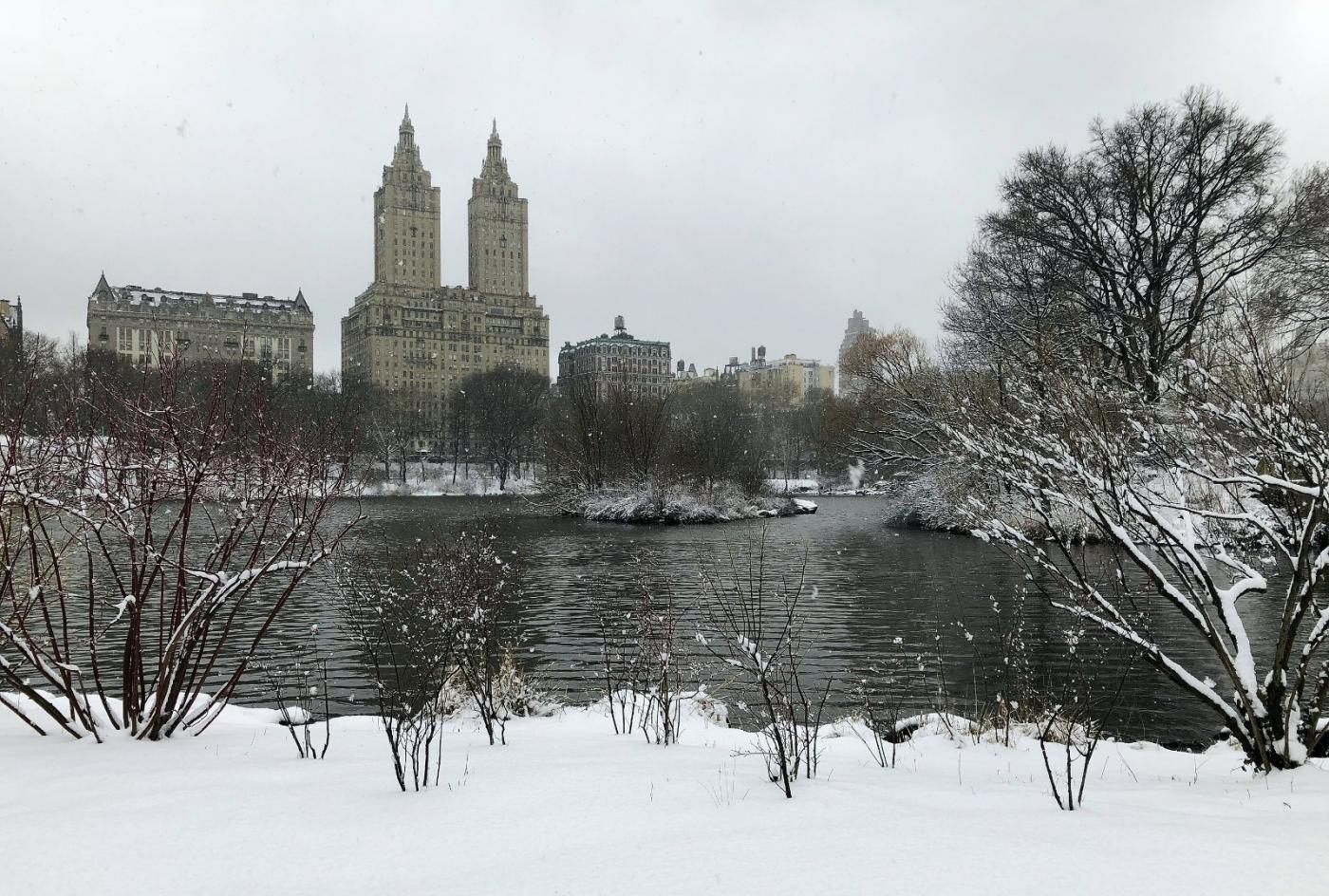 【田螺手机摄影】纽约雪景、还是中央公园最漂亮[二]_图1-1