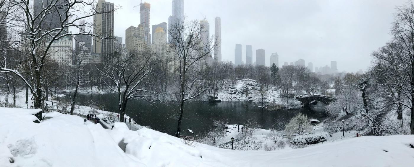 【田螺手机摄影】纽约雪景、还是中央公园最漂亮[二]_图1-2