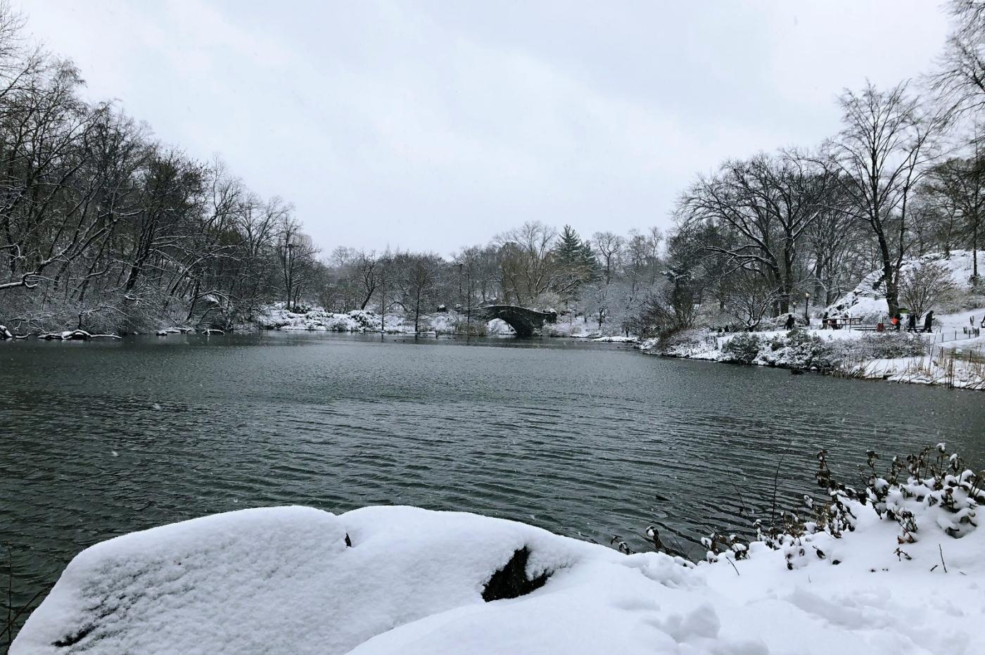 【田螺手机摄影】纽约雪景、还是中央公园最漂亮[二]_图1-4