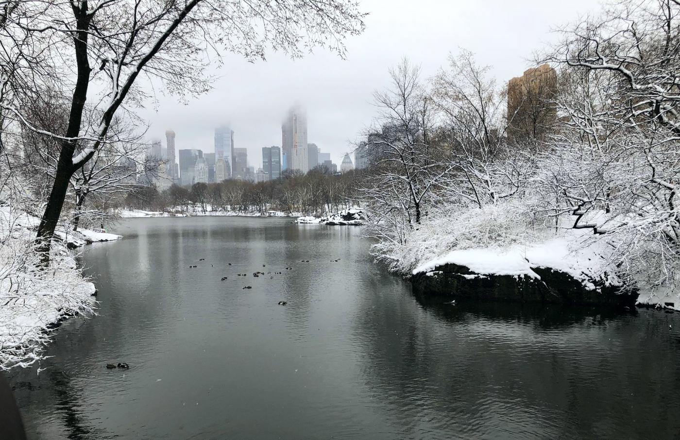 【田螺手机摄影】纽约雪景、还是中央公园最漂亮[二]_图1-3