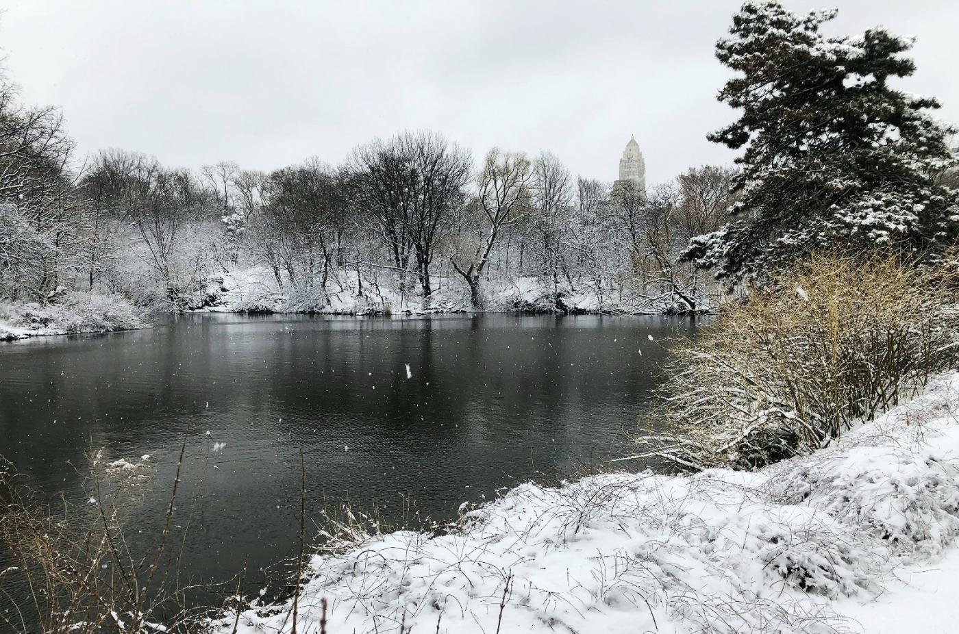 【田螺手机摄影】纽约雪景、还是中央公园最漂亮[二]_图1-5