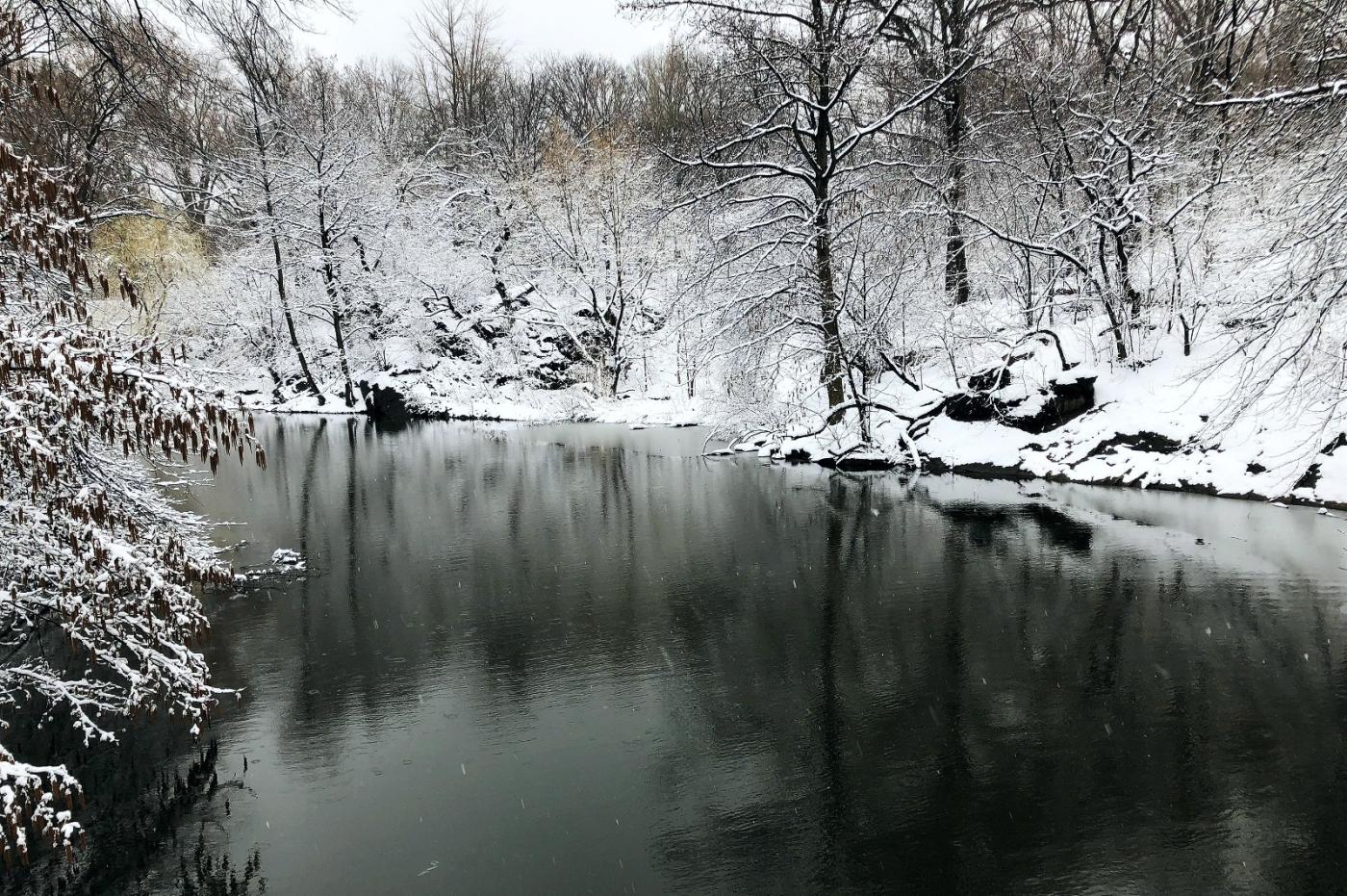 【田螺手机摄影】纽约雪景、还是中央公园最漂亮[二]_图1-6
