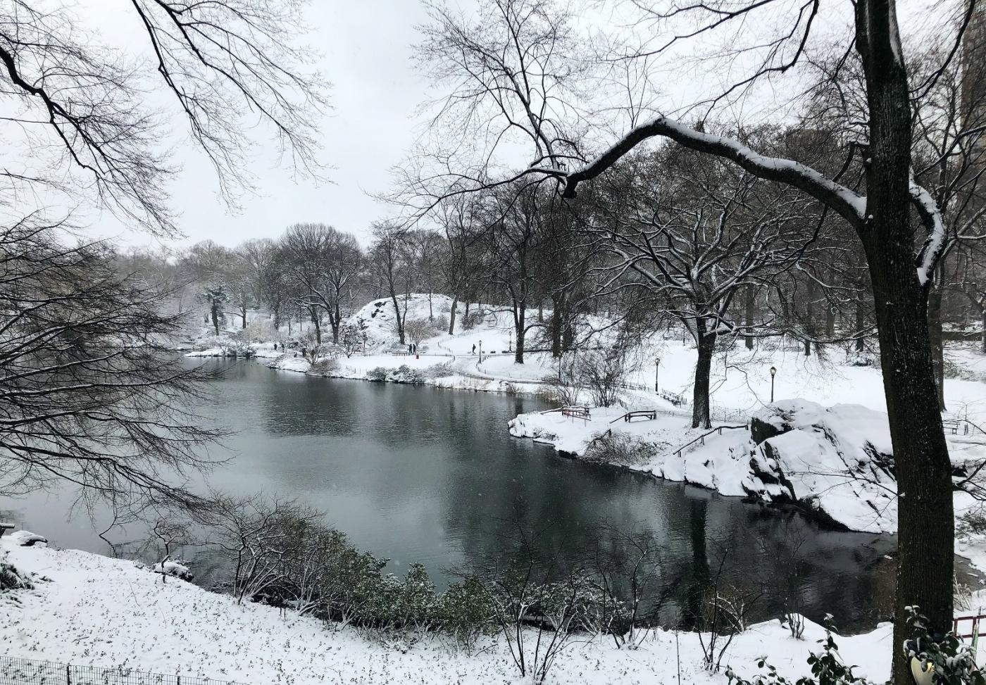 【田螺手机摄影】纽约雪景、还是中央公园最漂亮[二]_图1-10