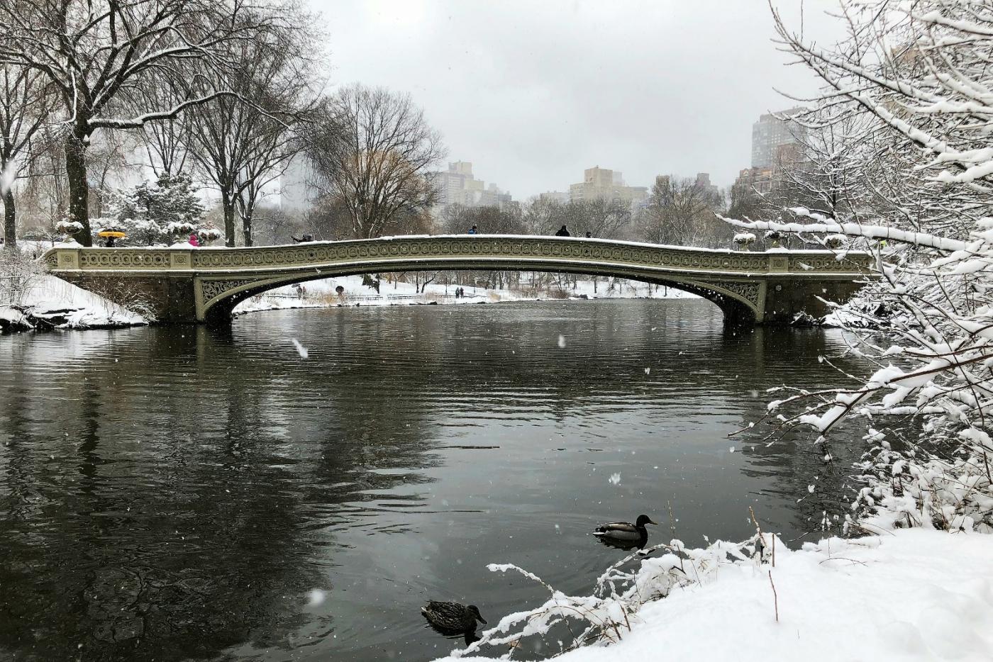 【田螺手机摄影】纽约雪景、还是中央公园最漂亮[二]_图1-11