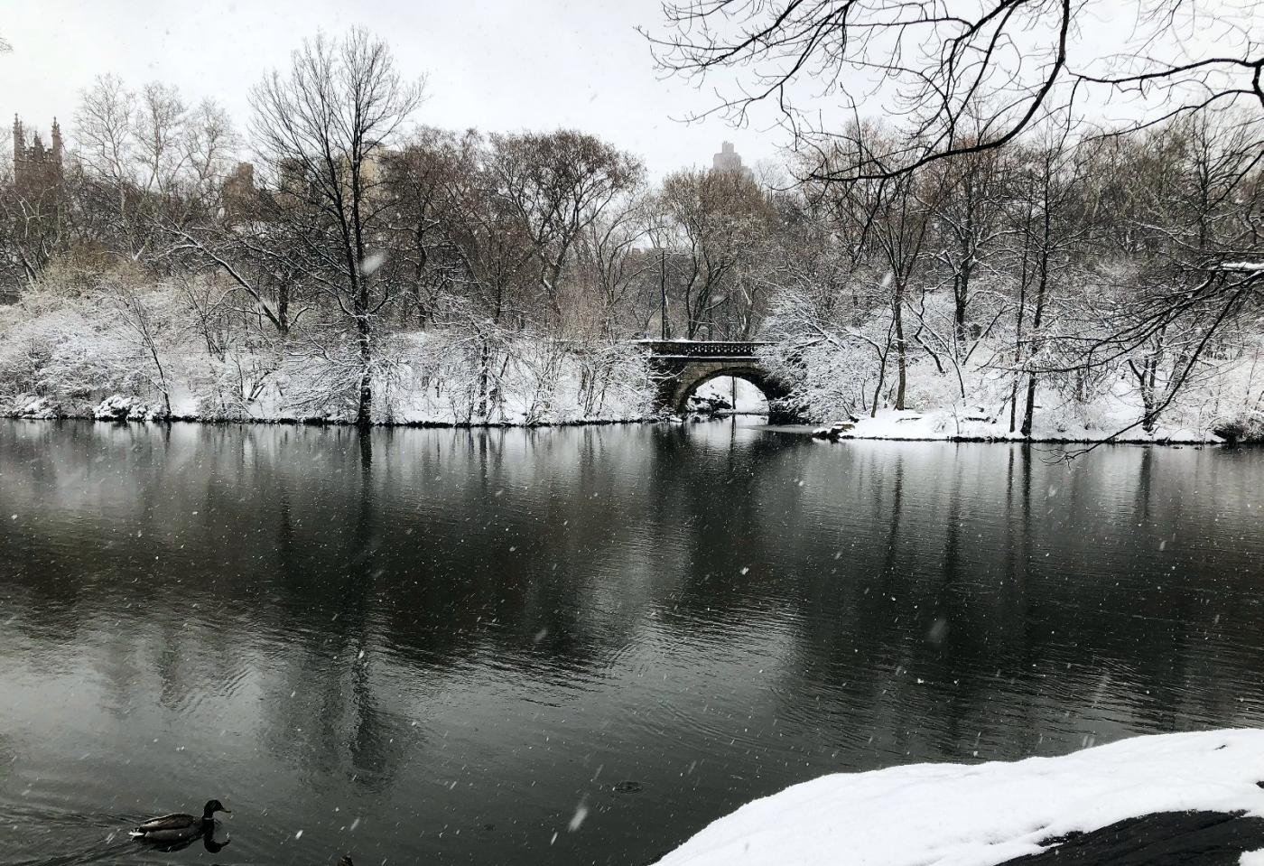 【田螺手机摄影】纽约雪景、还是中央公园最漂亮[二]_图1-15