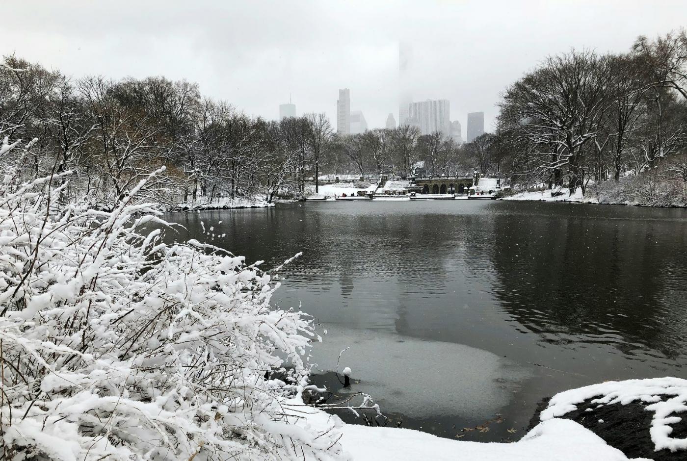 【田螺手机摄影】纽约雪景、还是中央公园最漂亮[二]_图1-14