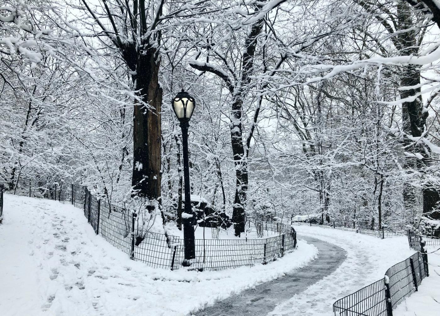 【田螺手机摄影】纽约雪景、还是中央公园最漂亮[二]_图1-16