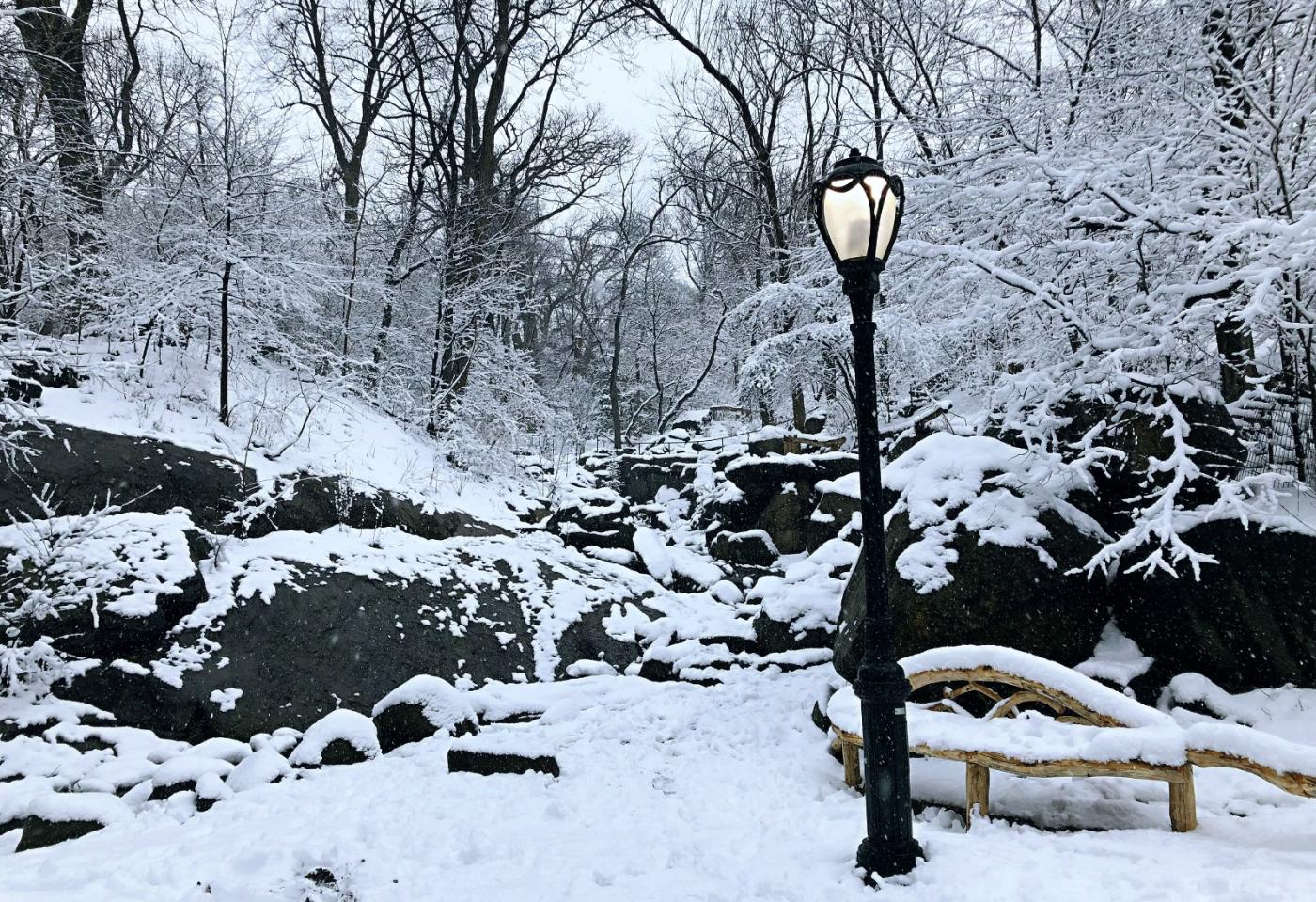 【田螺手机摄影】纽约雪景、还是中央公园最漂亮[二]_图1-17