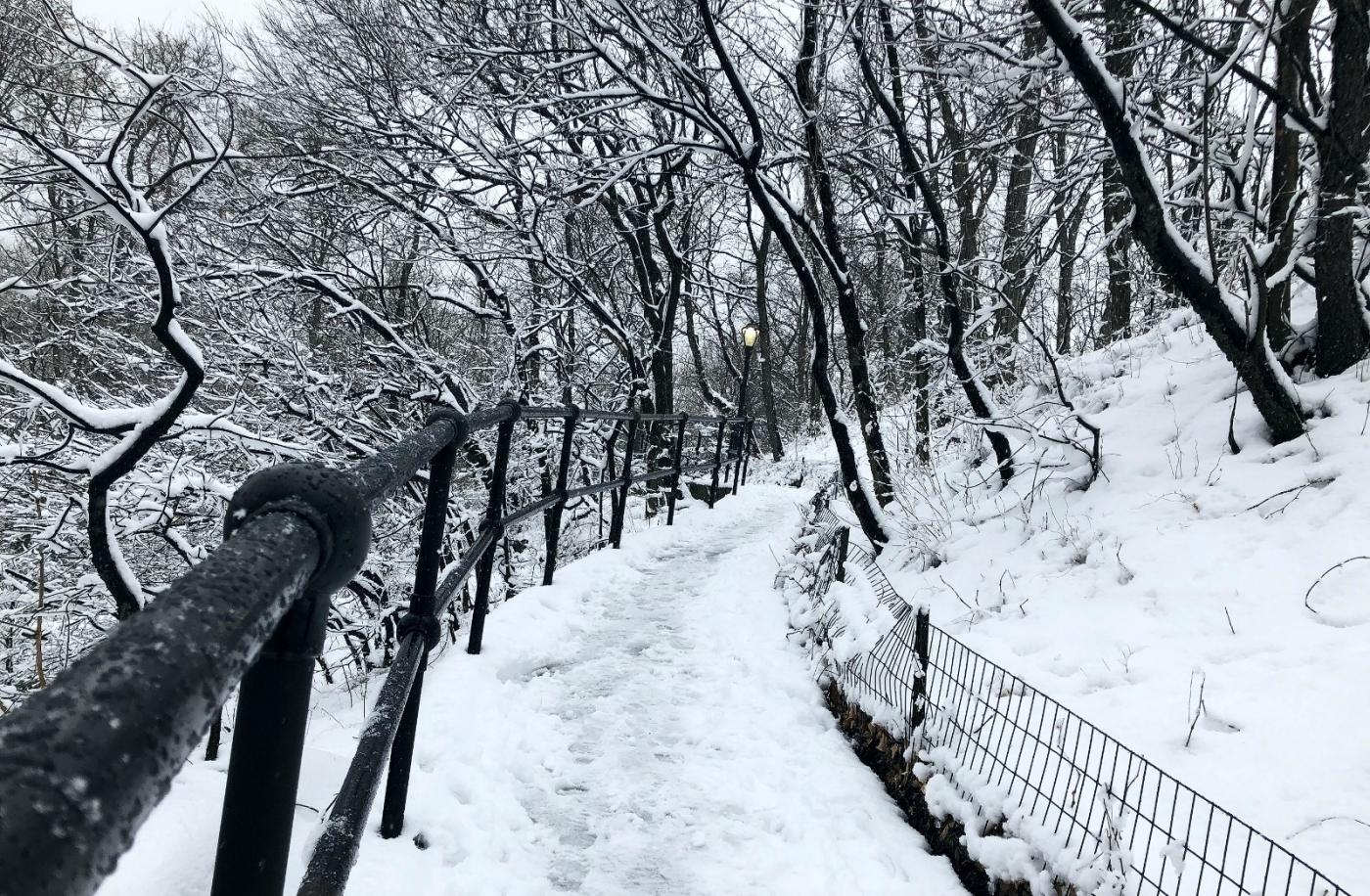 【田螺手机摄影】纽约雪景、还是中央公园最漂亮[二]_图1-18