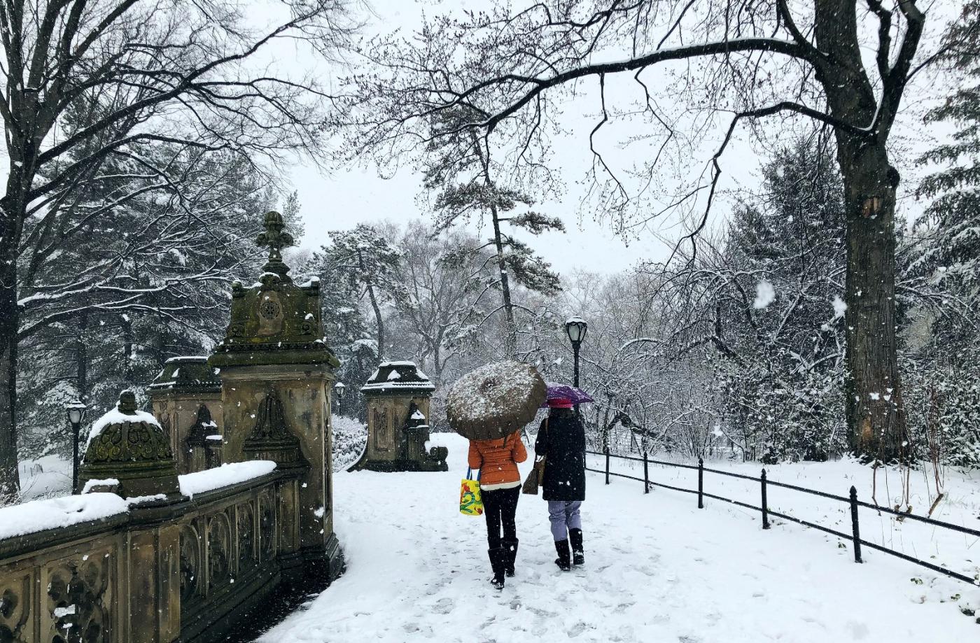 【田螺手机摄影】纽约雪景、还是中央公园最漂亮[二]_图1-24