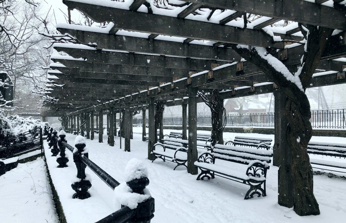 【田螺手机摄影】纽约雪景、还是中央公园最漂亮[二]_图1-25