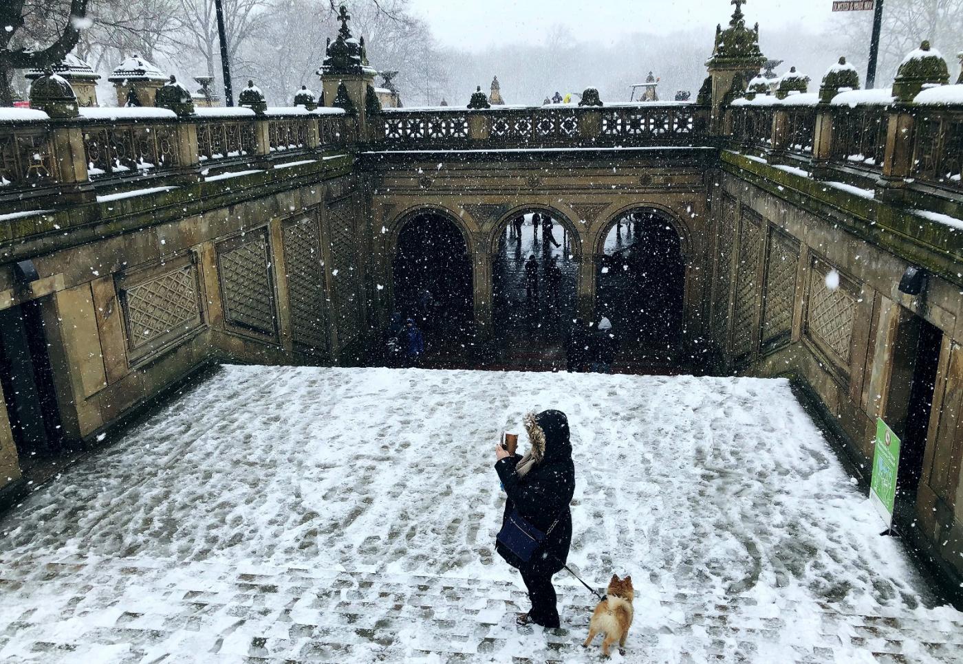 【田螺手机摄影】纽约雪景、还是中央公园最漂亮[二]_图1-26