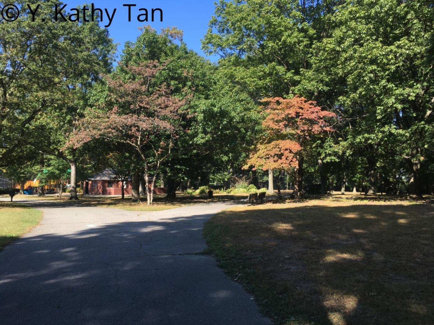 Alley Pond 公园的初秋_图1-3