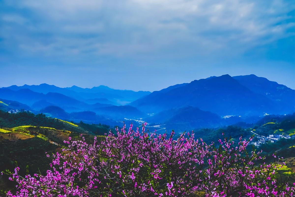 【杆言杆摄】风从徽州来  坡山村 白云深处隐藏的人家_图1-5