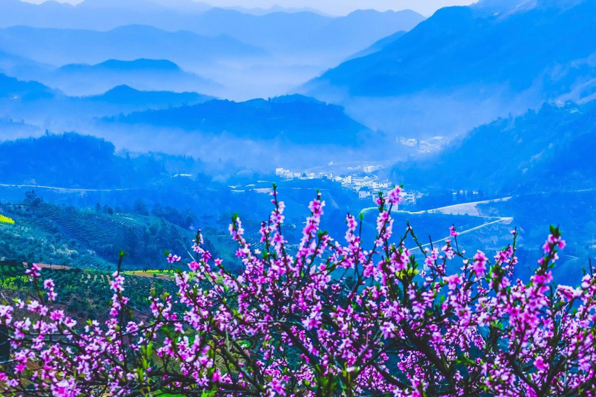 【杆言杆摄】风从徽州来  坡山村 白云深处隐藏的人家_图1-6