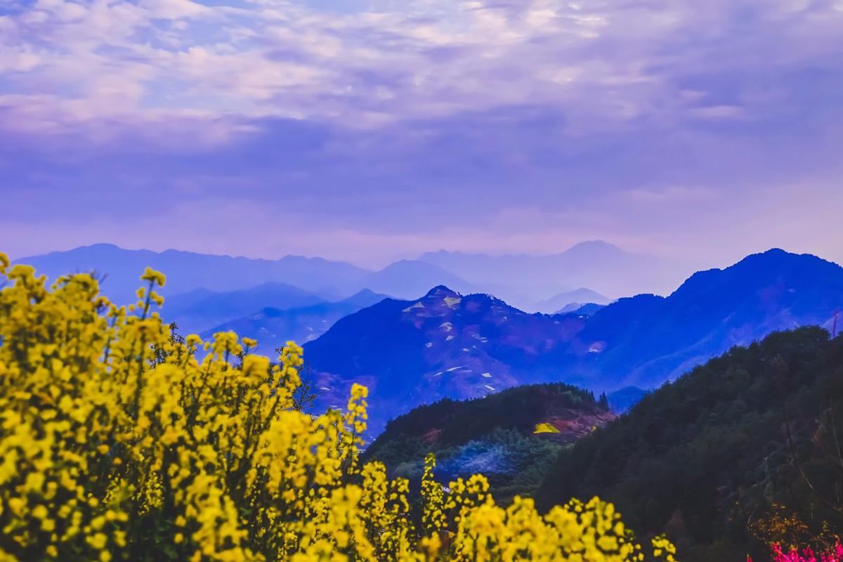 【杆言杆摄】风从徽州来  坡山村 白云深处隐藏的人家_图1-14