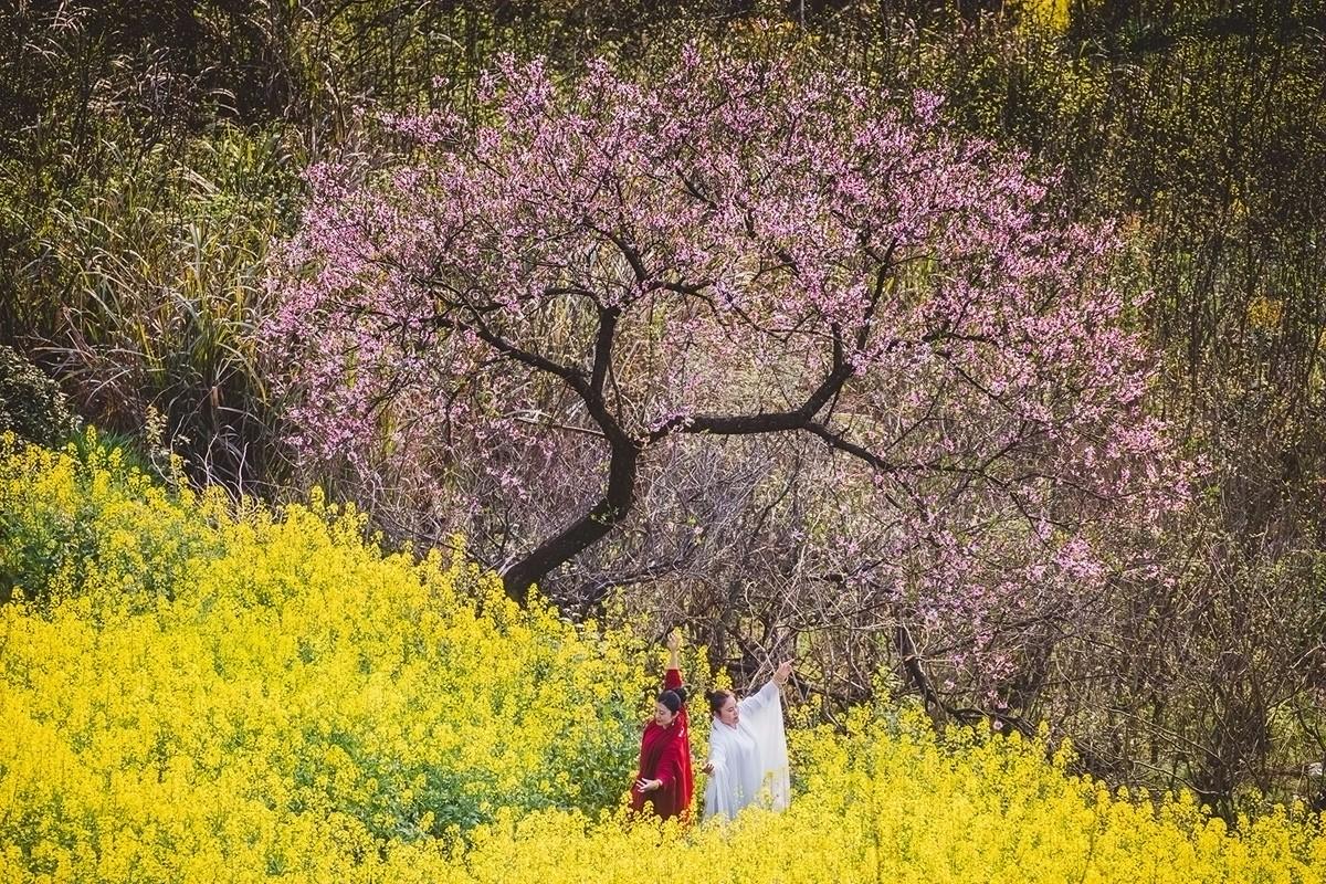 【杆言杆摄】风从徽州来 柿木汰 淡淡的乡愁记忆_图1-13