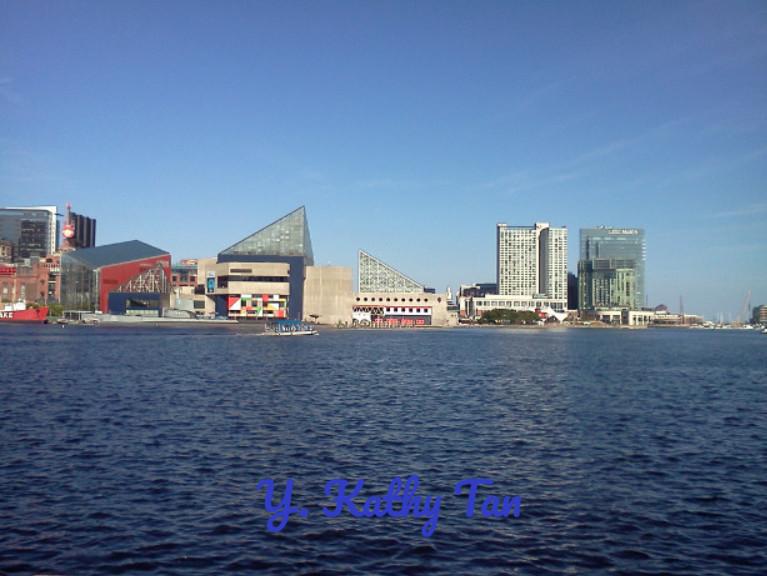 充满书香的沿海小城市_图1-9