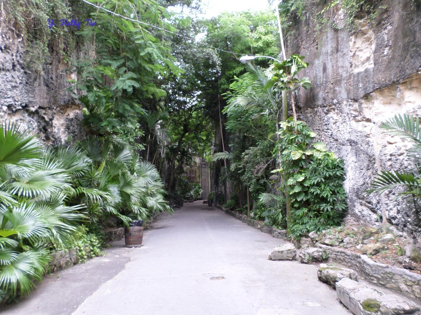神秘加勒比海南国小镇_图1-13