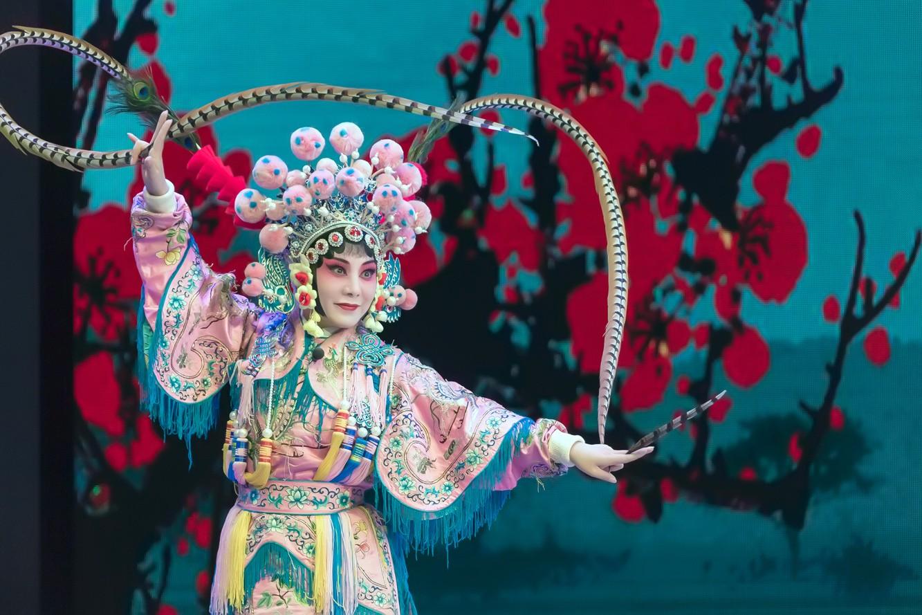 近期拍攝舞台圖片 趙本山張金蘭老師的圖片還是第一次發表_圖1-35